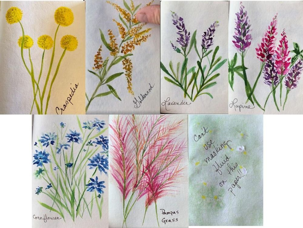 Painting Flowers with Marks: Painting Challenge - image 1 - student project
