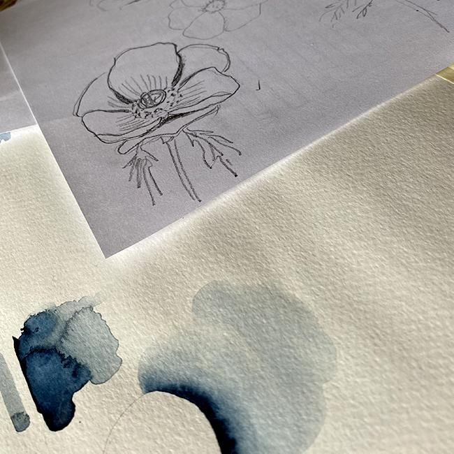 Modern Anemones in Watercolor and Ink - image 1 - student project