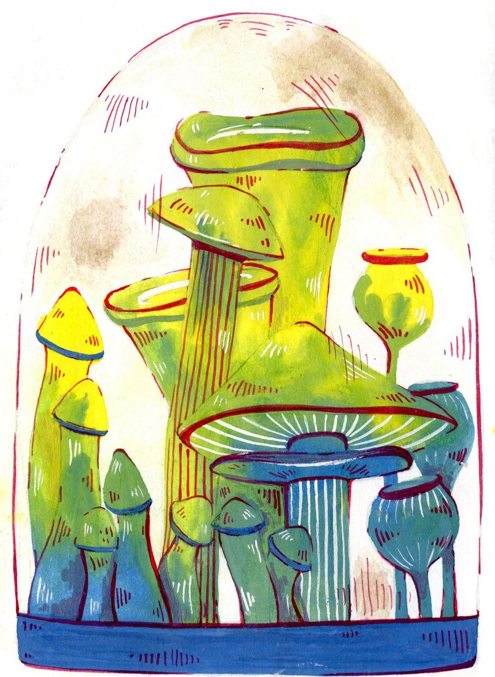Mushrooms - image 2 - student project