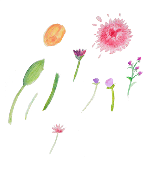 Florals and Florets  - image 3 - student project