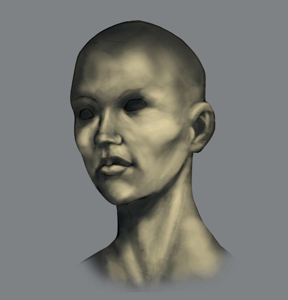 Head Study (Male, Female, Villain, Punk Girl, Buddy) - image 6 - student project