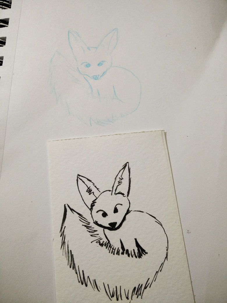 Fennec Fox - image 1 - student project