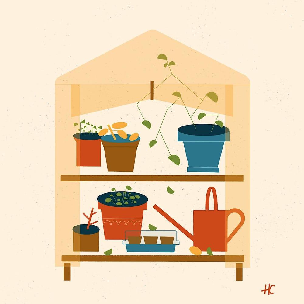 Mini Greenhouse - image 1 - student project