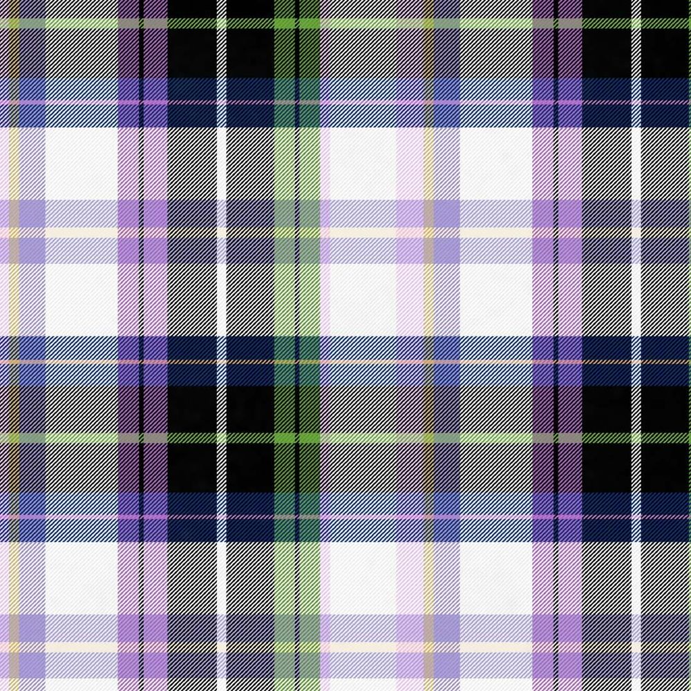 Pretty in Plaid - image 4 - student project
