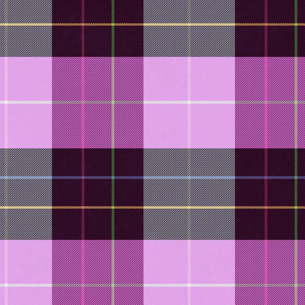 Pretty in Plaid - image 5 - student project