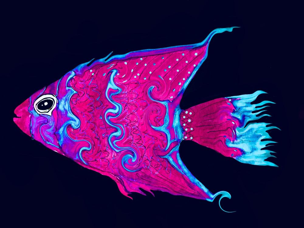 100FISHS - image 1 - student project