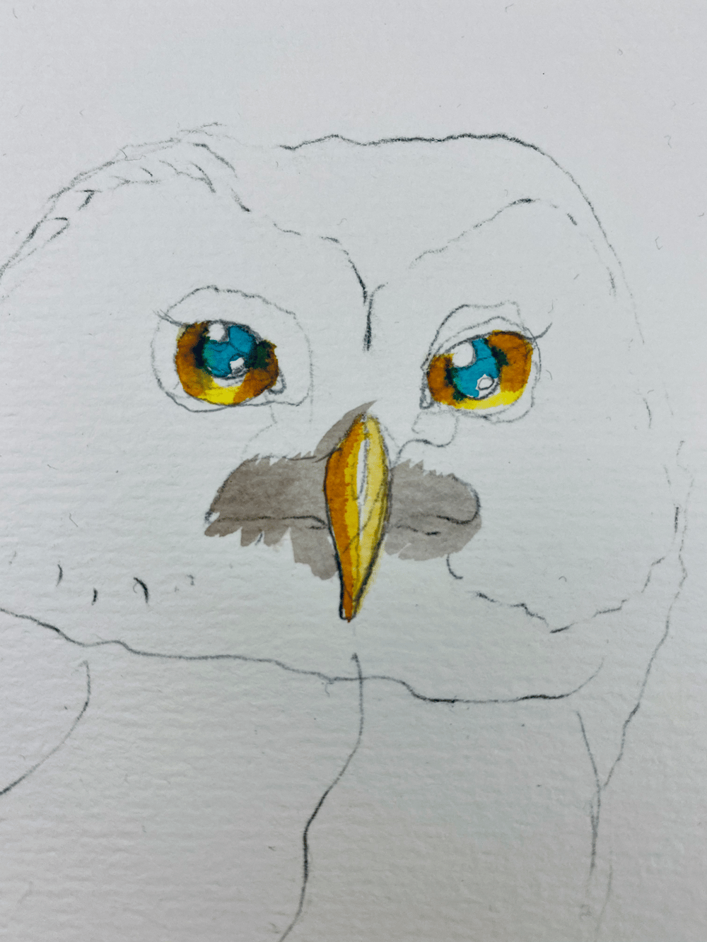My OwlPainting in INK - image 6 - student project