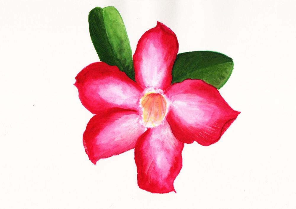 Sample Blooming Flowers - image 1 - student project