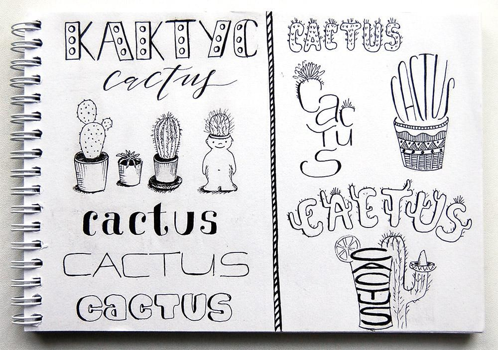 Cactus & other doodles - image 1 - student project