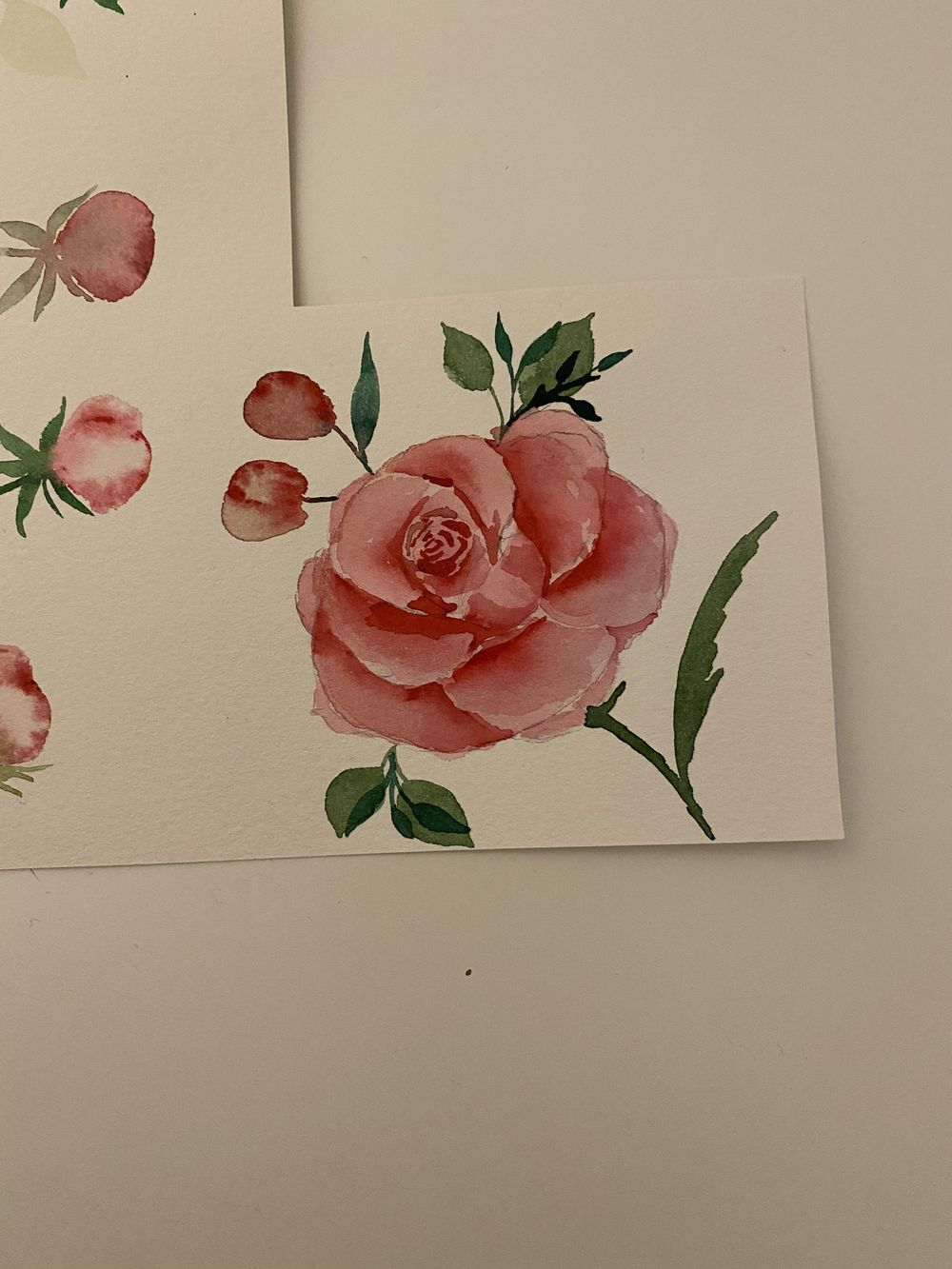 Florals - image 5 - student project