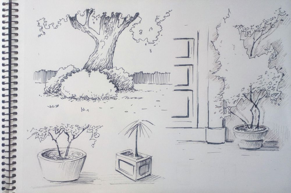 Greenery in Urban Sketching - image 7 - student project