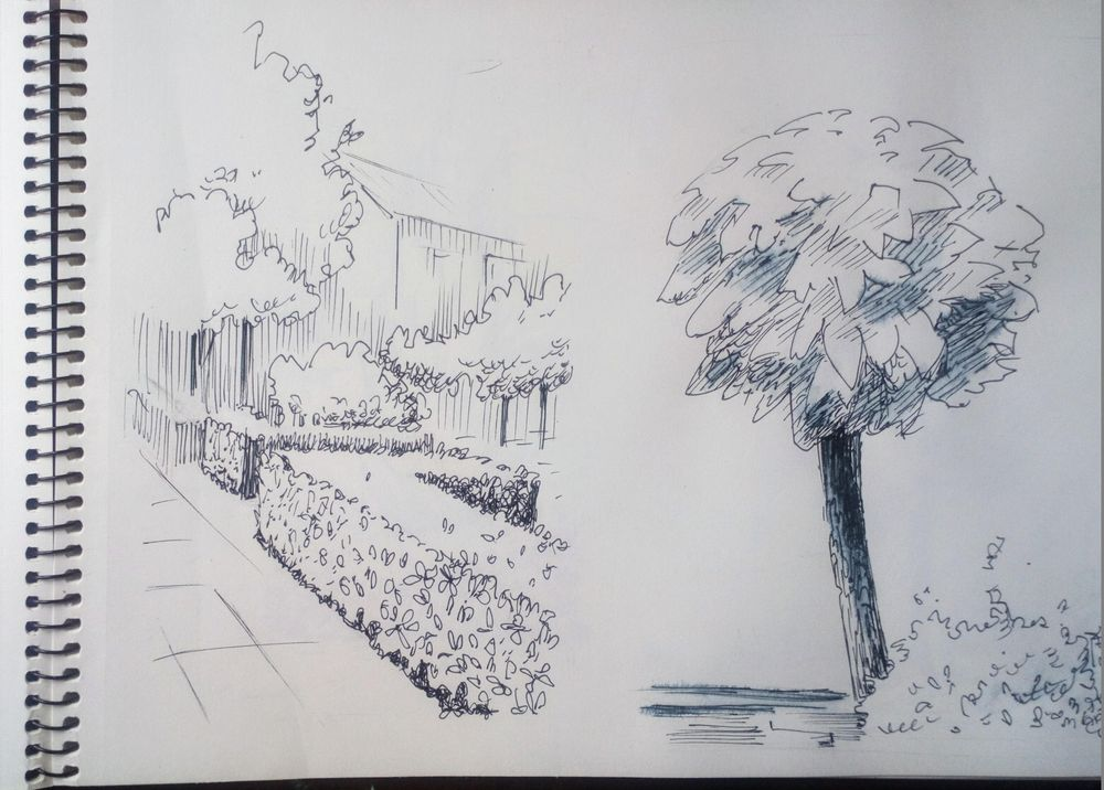 Greenery in Urban Sketching - image 8 - student project