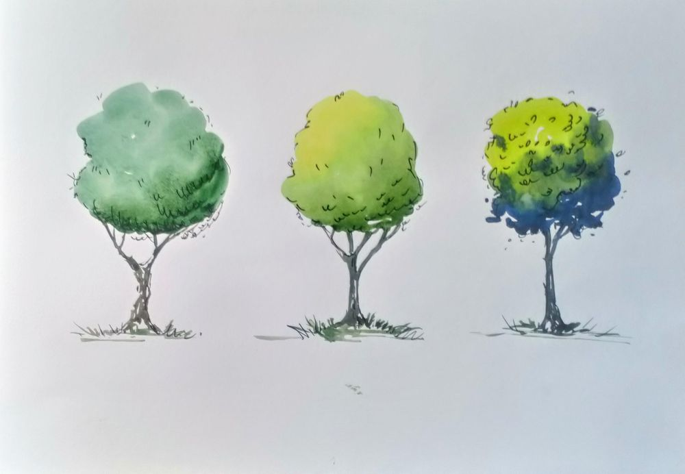 Greenery in Urban Sketching - image 10 - student project