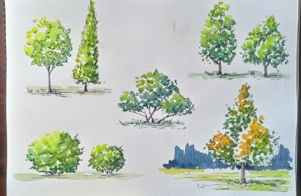 Greenery in Urban Sketching - image 13 - student project