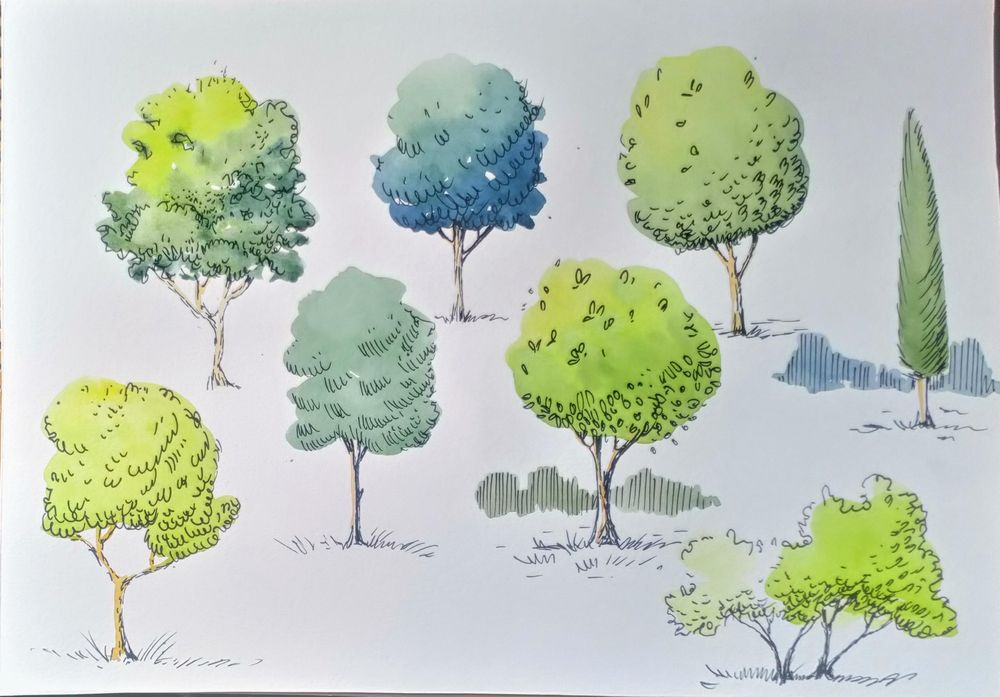 Greenery in Urban Sketching - image 12 - student project