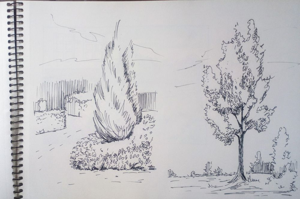 Greenery in Urban Sketching - image 9 - student project