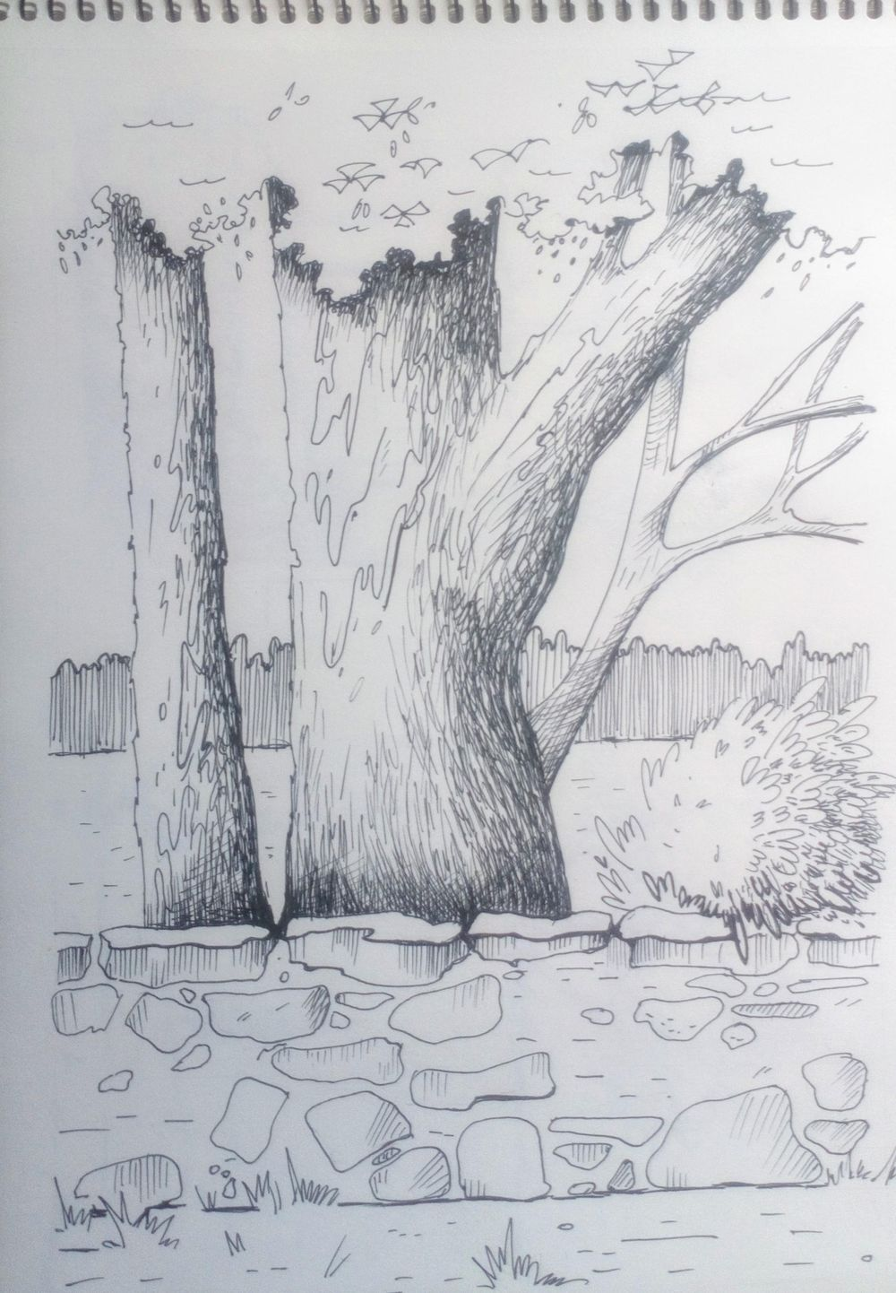 Greenery in Urban Sketching - image 5 - student project