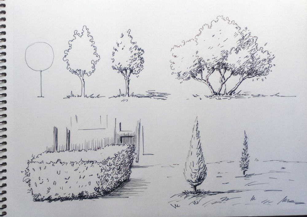 Greenery in Urban Sketching - image 6 - student project