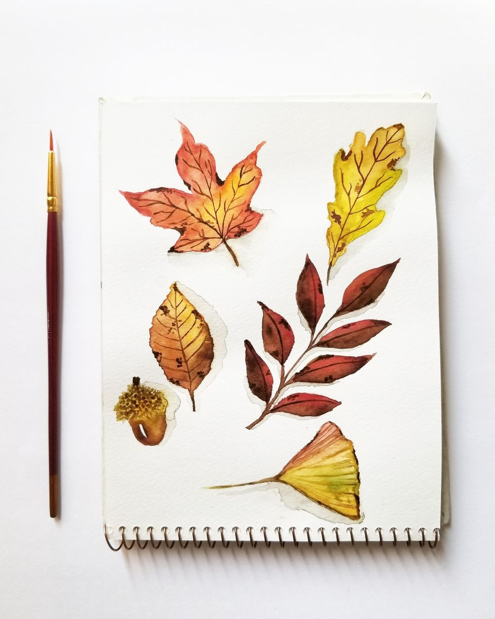 Had a blast painting these amazing leaves - image 1 - student project