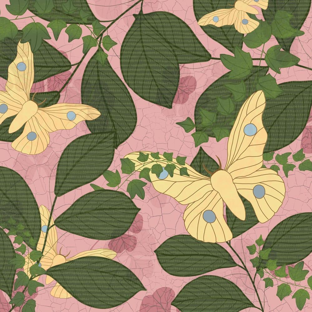 Botanical illustration - image 2 - student project