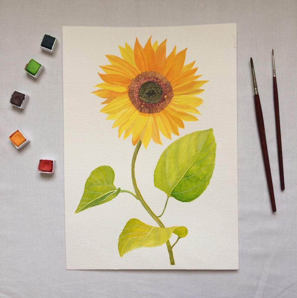 Mixed Midea Vintage-Inspired Botanical Illustration - image 3 - student project