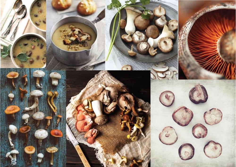 Roasted Mushroom Soup - image 1 - student project
