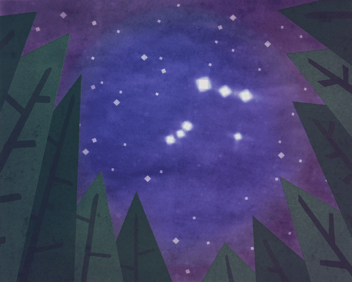 Thetis Island Nights - image 1 - student project