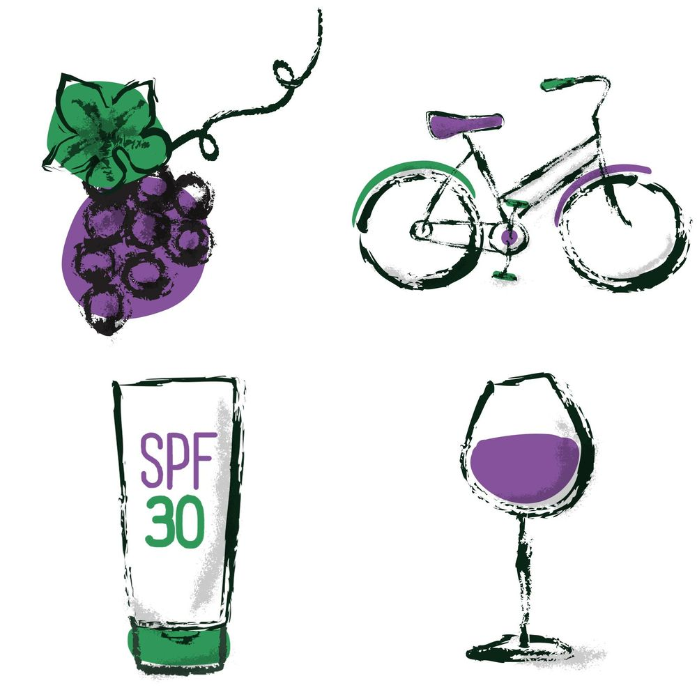 Wine Tasting by Bicycle in Sonoma - image 16 - student project