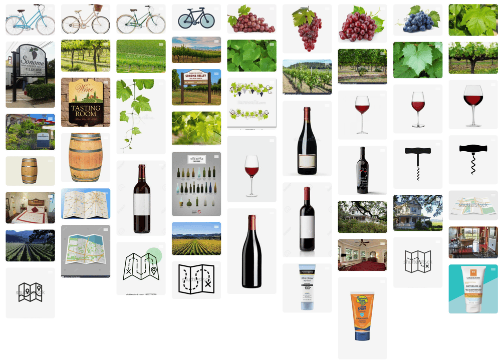 Wine Tasting by Bicycle in Sonoma - image 2 - student project