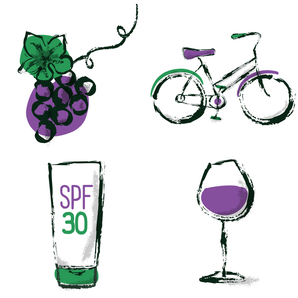 Wine Tasting by Bicycle in Sonoma - image 10 - student project
