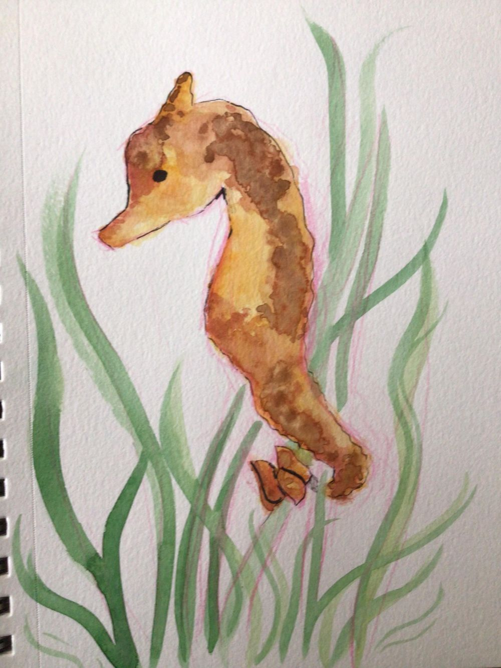Watercolors - image 1 - student project