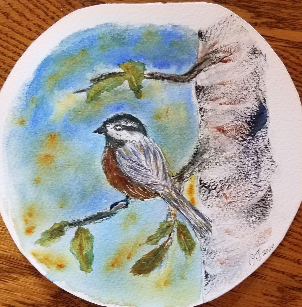 chickadee - image 1 - student project
