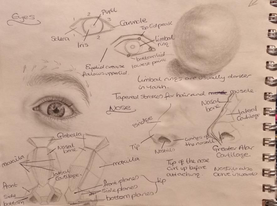 Realistic heads - image 3 - student project