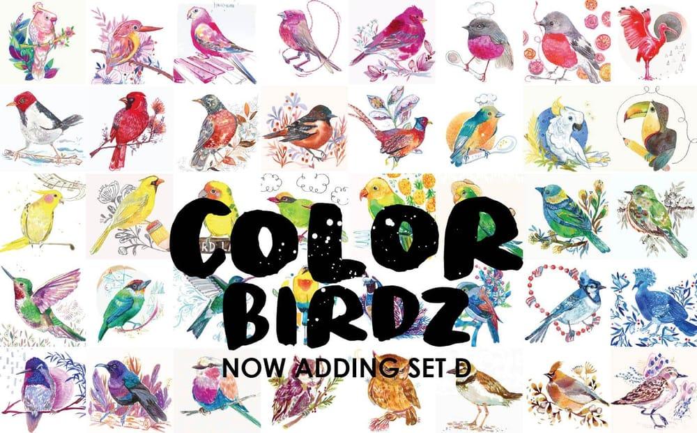 More Color Birdz - image 1 - student project