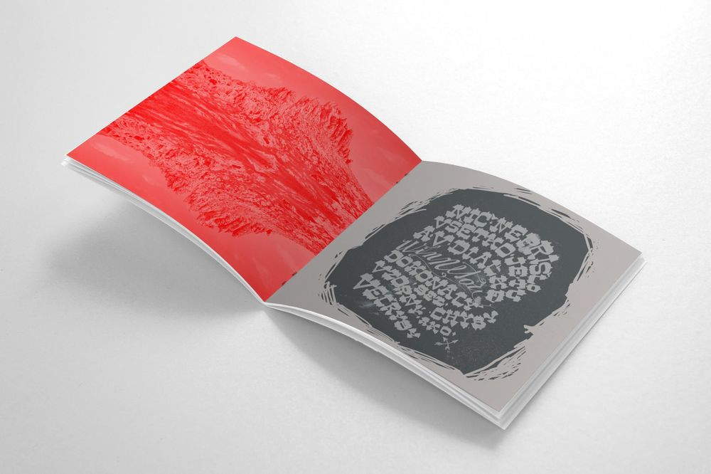LP sized booklet for musician - image 1 - student project