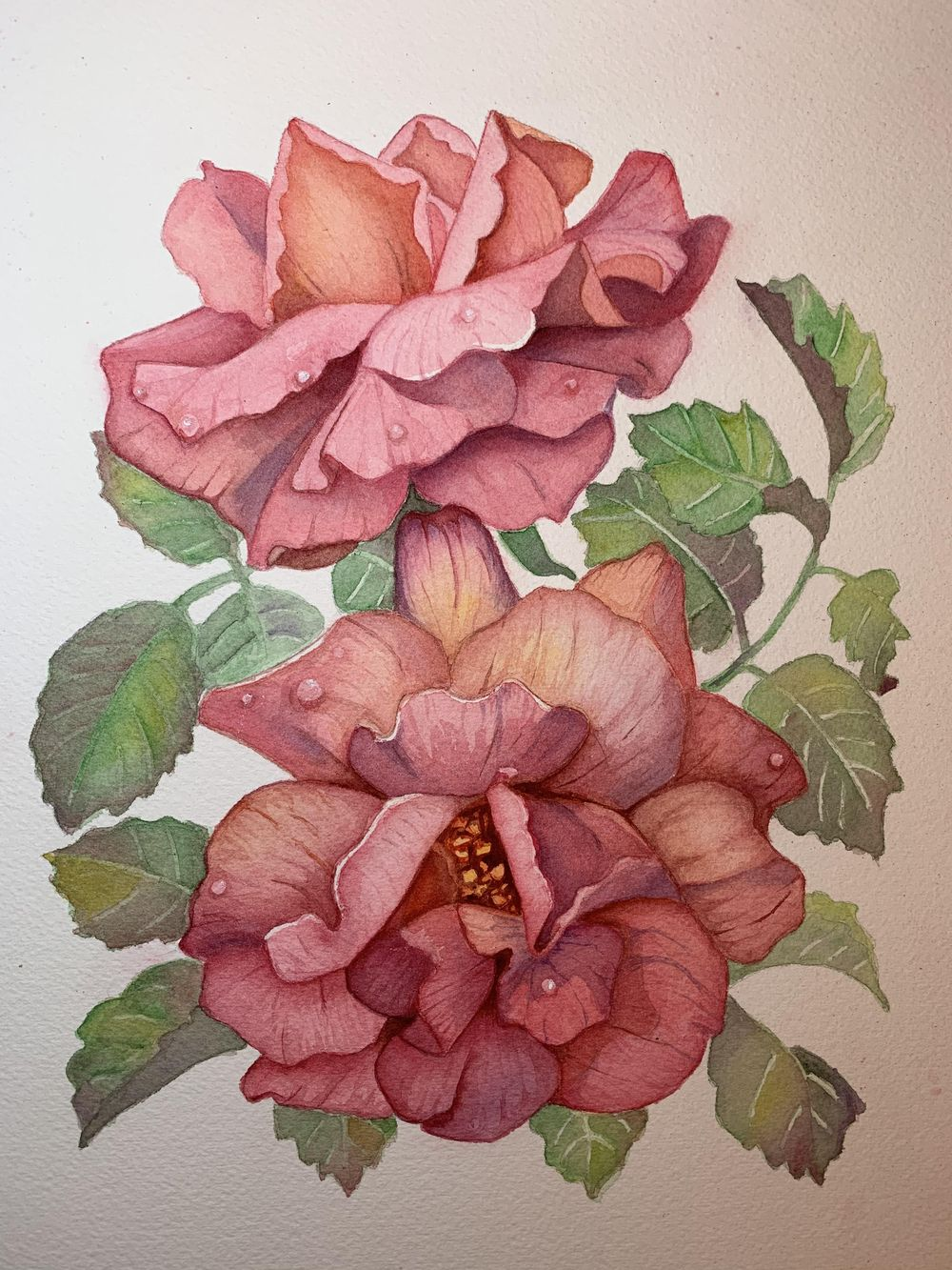 Red Roses - image 1 - student project