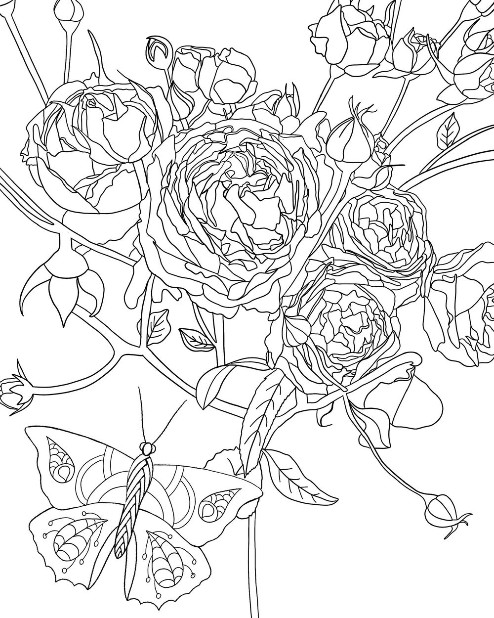 Botanical Coloring Book - image 2 - student project