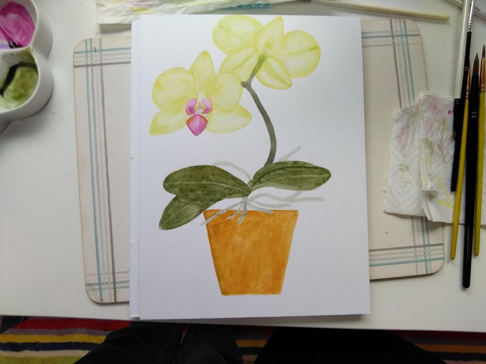 Orchid - image 1 - student project