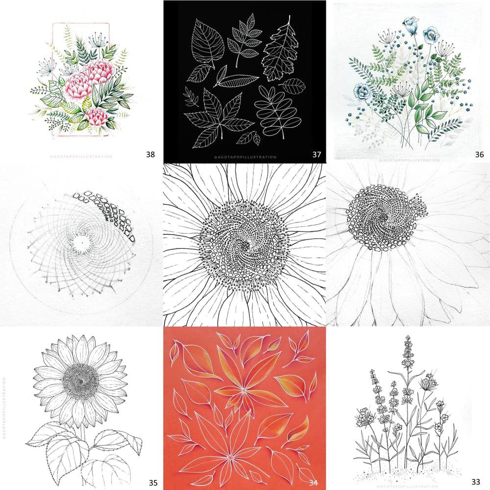 100 day of inking - Botanical illustrations - image 21 - student project