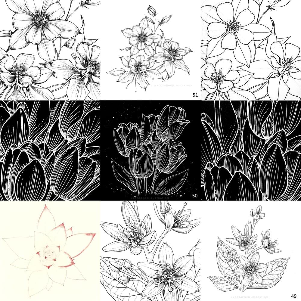 100 day of inking - Botanical illustrations - image 17 - student project