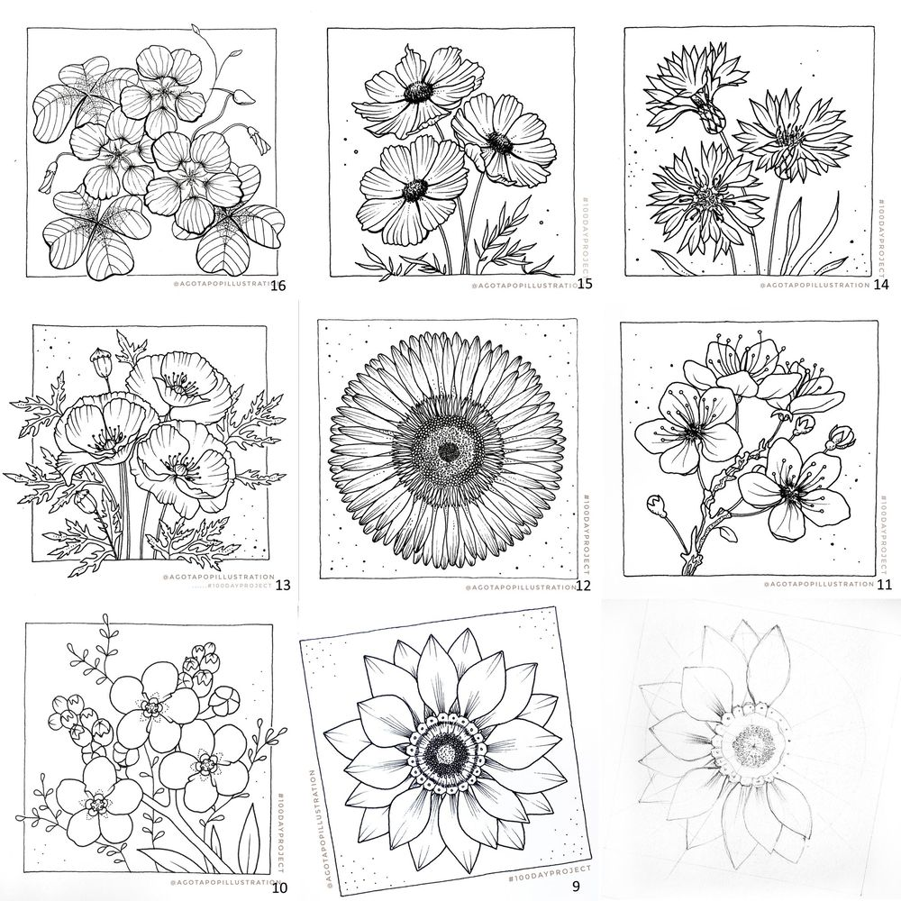 100 day of inking - Botanical illustrations - image 24 - student project