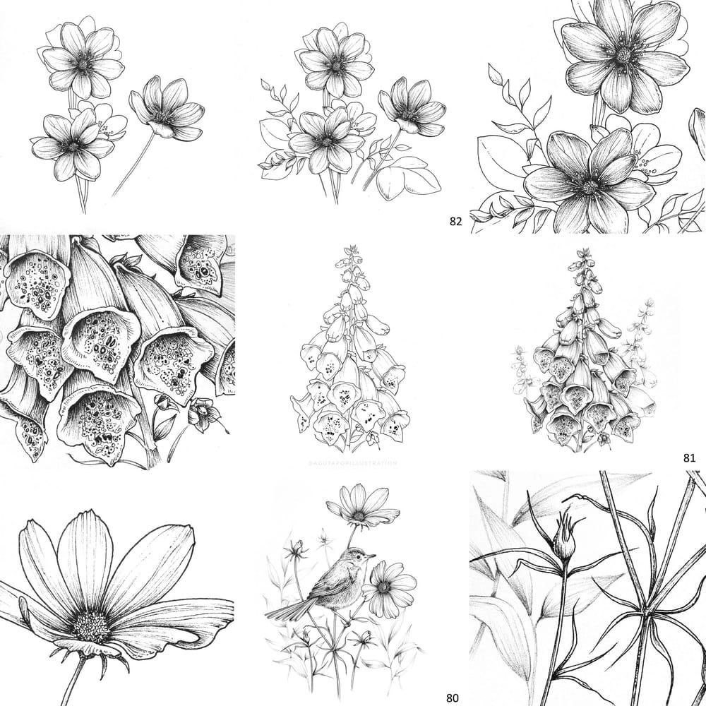 100 day of inking - Botanical illustrations - image 7 - student project
