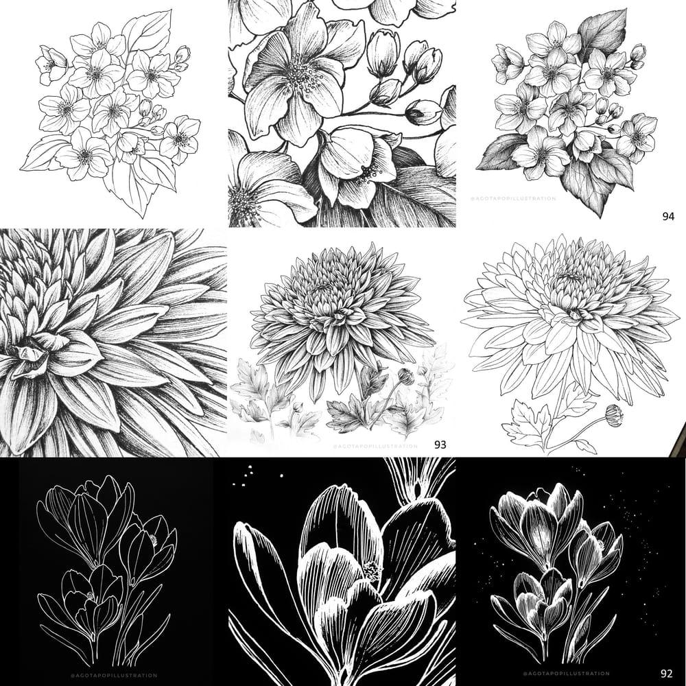 100 day of inking - Botanical illustrations - image 3 - student project