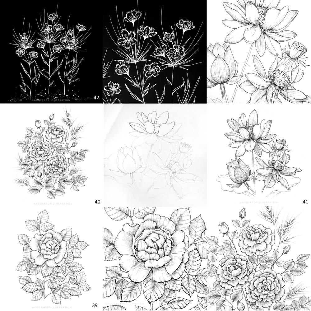 100 day of inking - Botanical illustrations - image 20 - student project