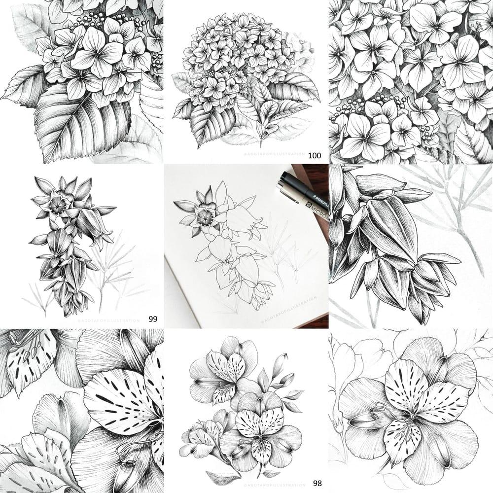 100 day of inking - Botanical illustrations - image 1 - student project