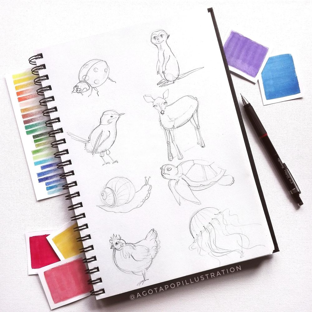 Cute animals - image 1 - student project