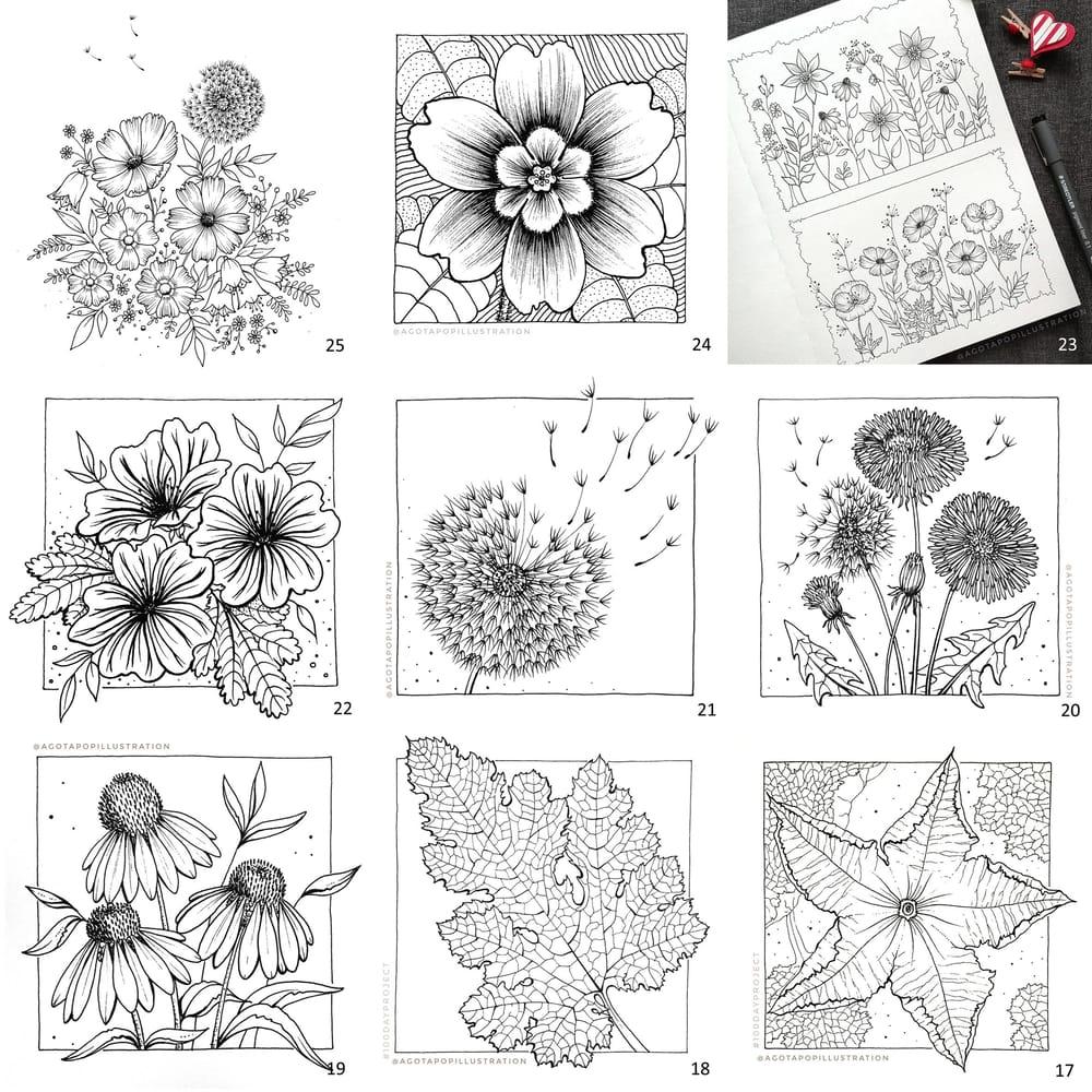 100 day of inking - Botanical illustrations - image 23 - student project