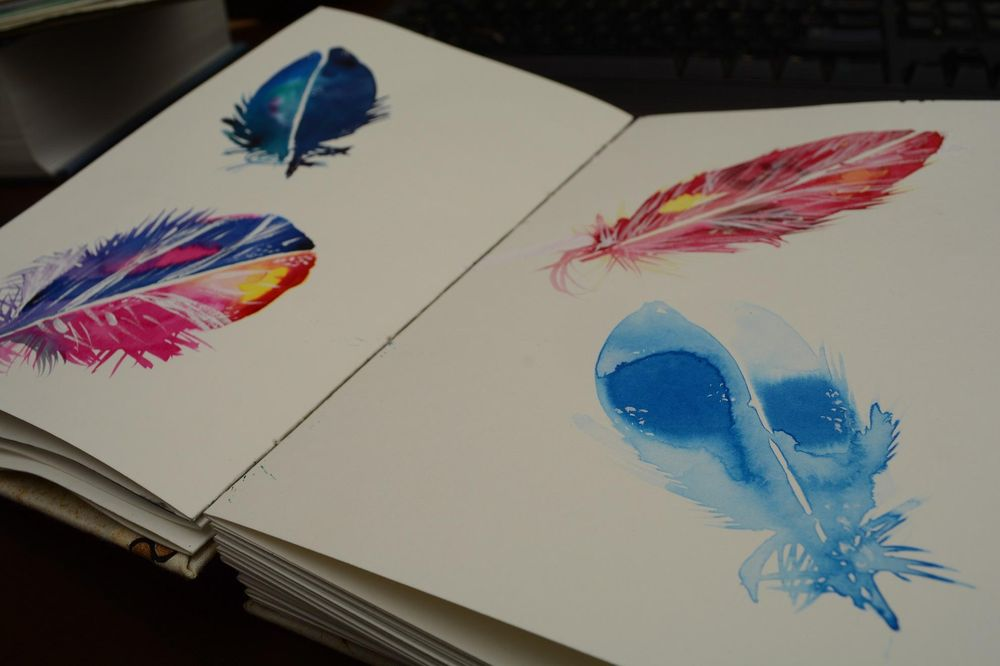 Loosely Sketched Feathers - image 2 - student project