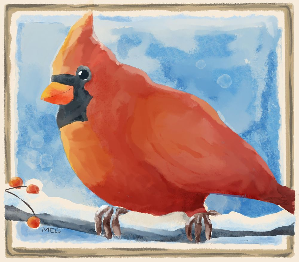 Watercolor Red Bird - image 1 - student project