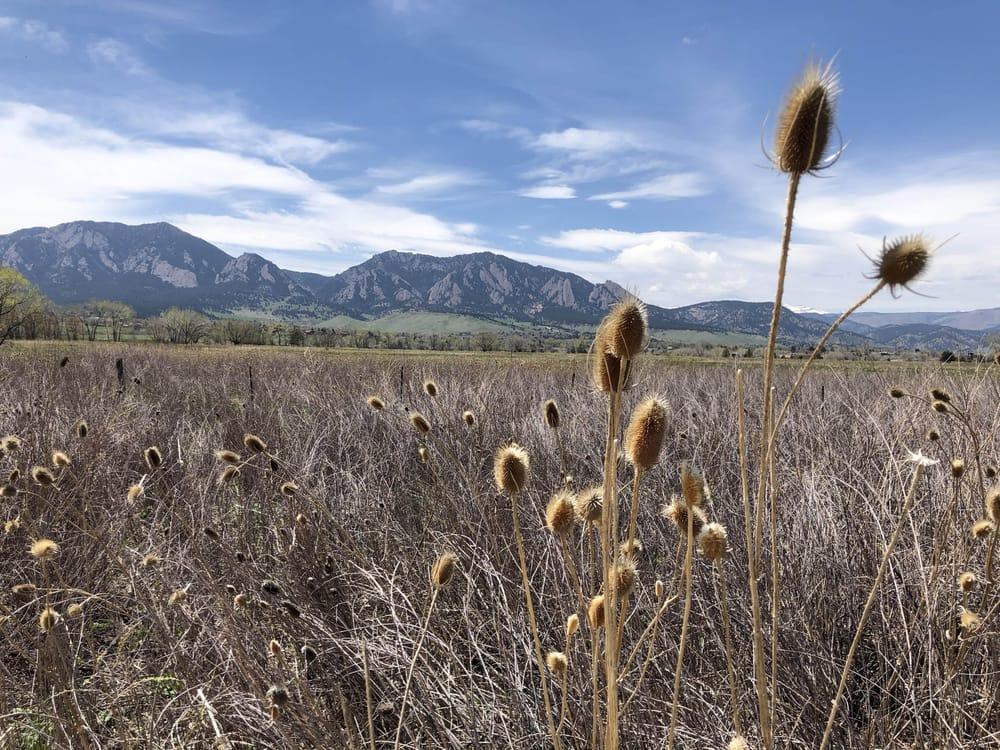 Colorado Landscape - image 1 - student project